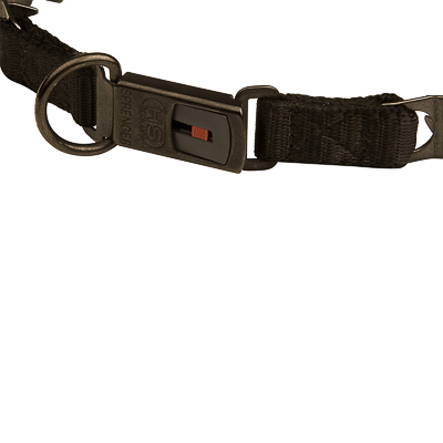 """Dark Force"" Black Stainless Steel Dog Pinch Collar with Click Lock Buckle"